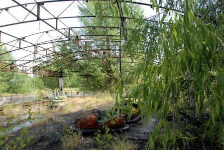 NATURE FIGHTS BACK IN CHERNOBYL – Tchernobyl, une histoire naturelle? 5