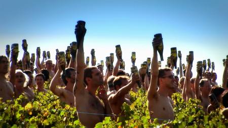 Photo nus bouteilles